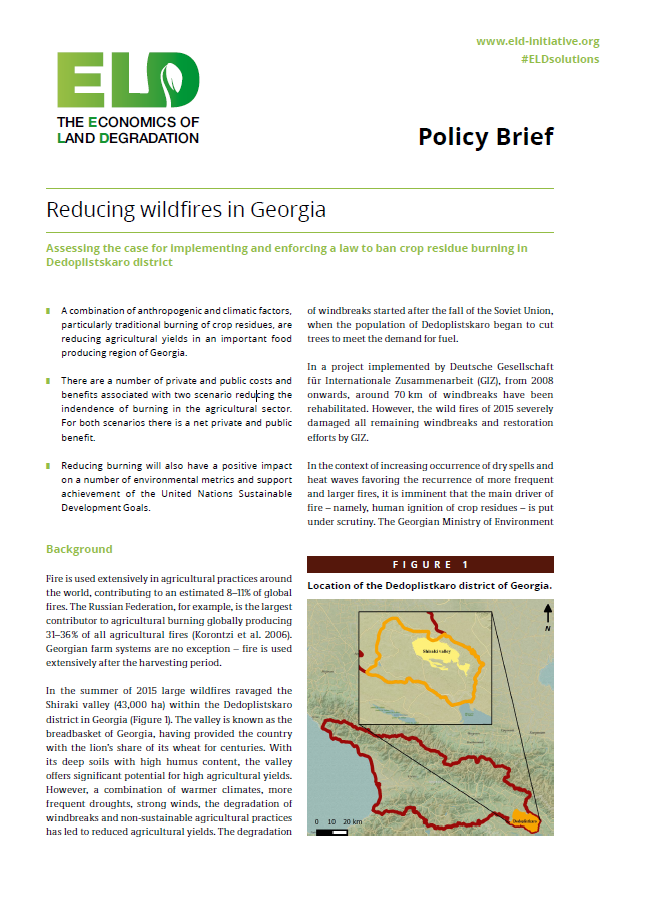 Policy Brief - Reducing wildfires in Georgia | Green Growth ...